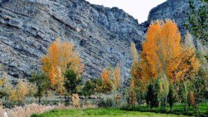 اطلاعات اصناف استان خراسان شمالی