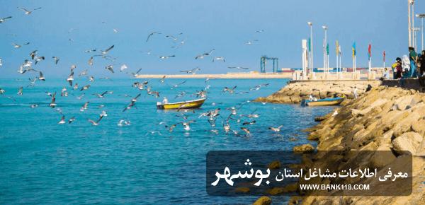 لیست بانک اطلاعات مشاغل استان بوشهر