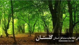 بانک اطلاعات اصناف استان گلستان