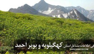 بانک اطلاعات اصناف استان کهگیلویه و بویراحمد