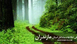 بانک اطلاعات اصناف استان مازندران